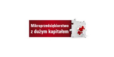 Mikroprzedsiębiorstwo z dużym kapitałem